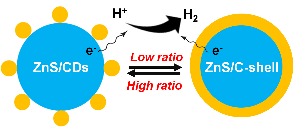 Carbon-ensemble-manipulated ZnS Heterostructures for Enhanced Photocatalytic H2 Evolution