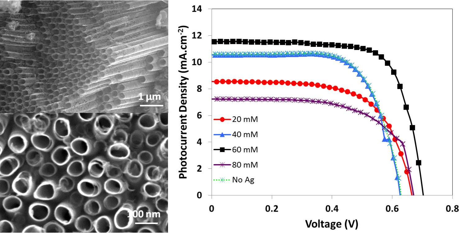 Self-ordering anodized nanotubes: Enhancing the performance by surface plasmon for dye-sensitized solar cell