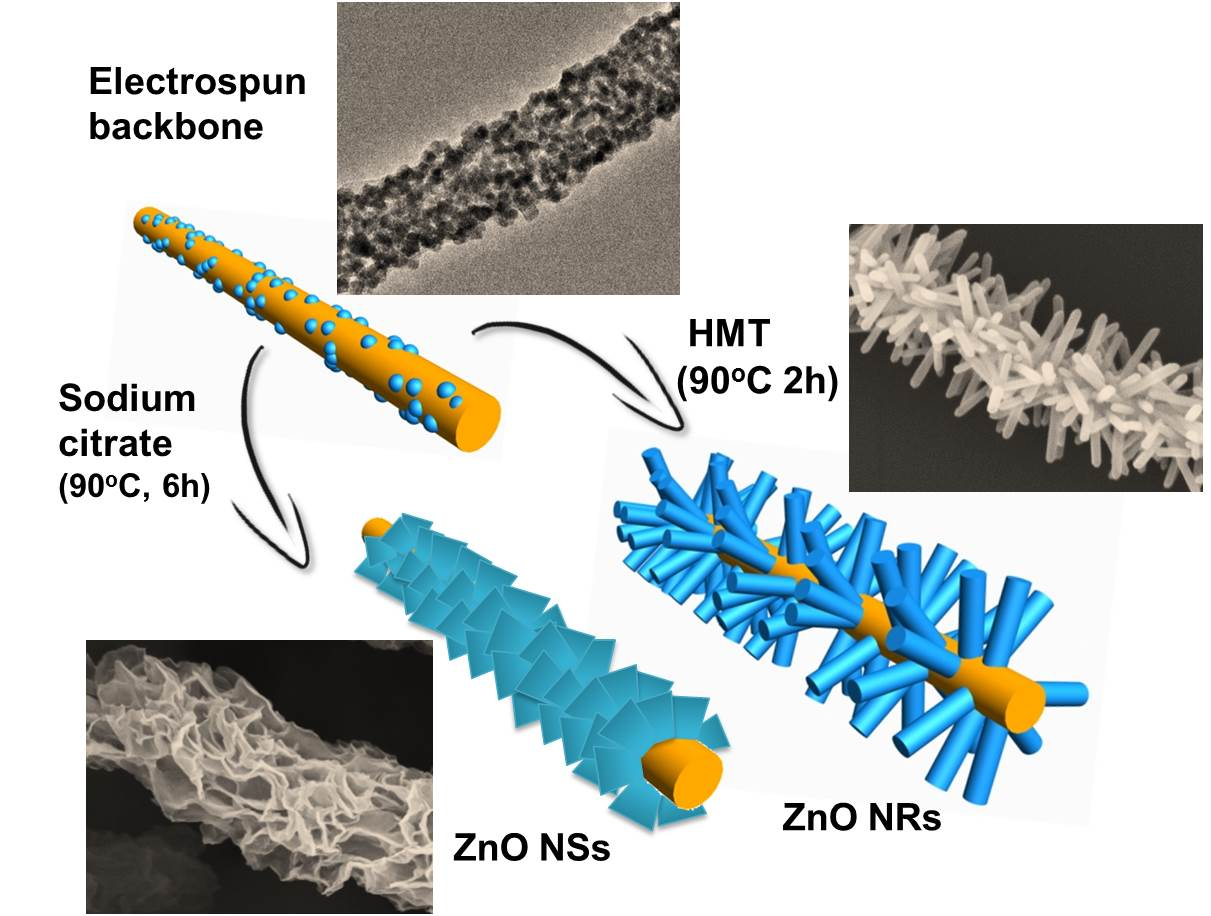 Hierarchical assembly of SnO2/ZnO nanostructures for enhanced photocatalytic performance