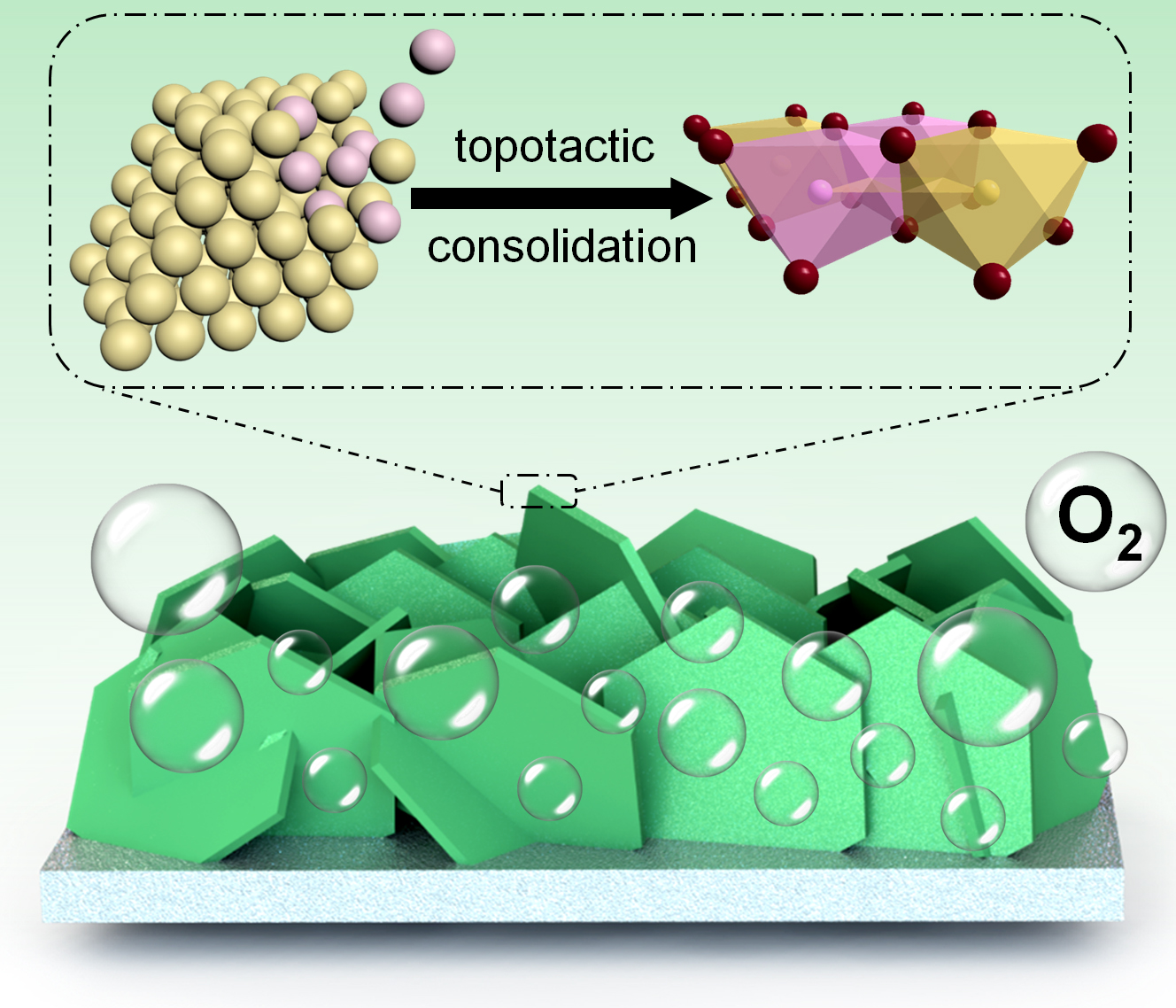 Topotactic Consolidation of Monocrystalline CoZn Hydroxides Towards Advanced Oxygen Evolution Electrodes
