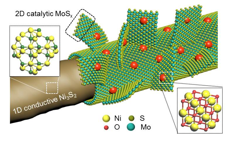 Multi-compositional hierarchical nanostructured Ni3S2@MoSx/NiO electrode for enhanced electrocatalytic hydrogen generation and energy storage