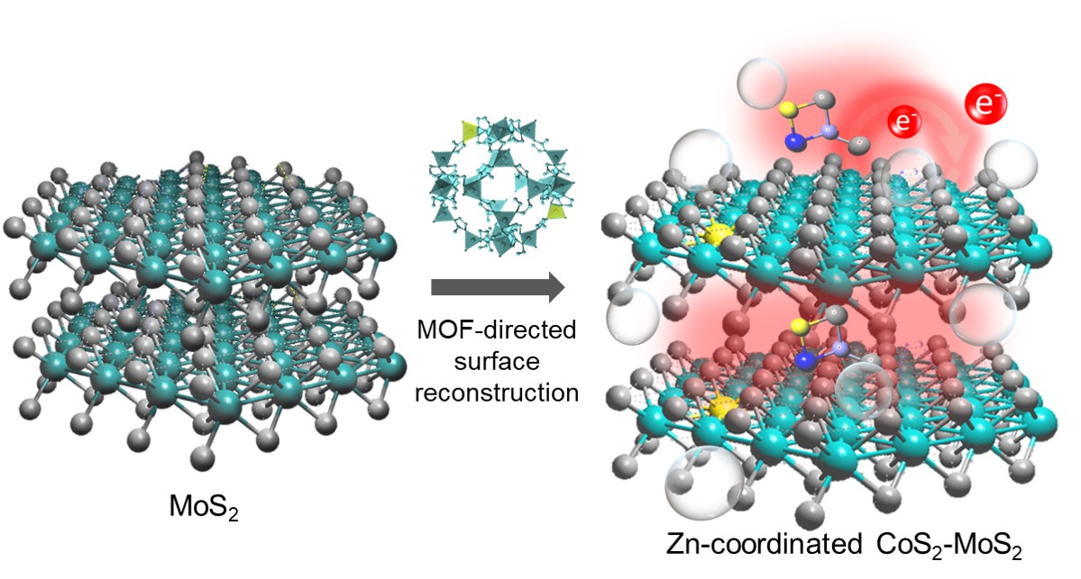 Simulated electrocatalytic hydrogen evolution activity of MOF-derived MoS2 basal domains via charge injection through surface functionalization and heteroatom doping