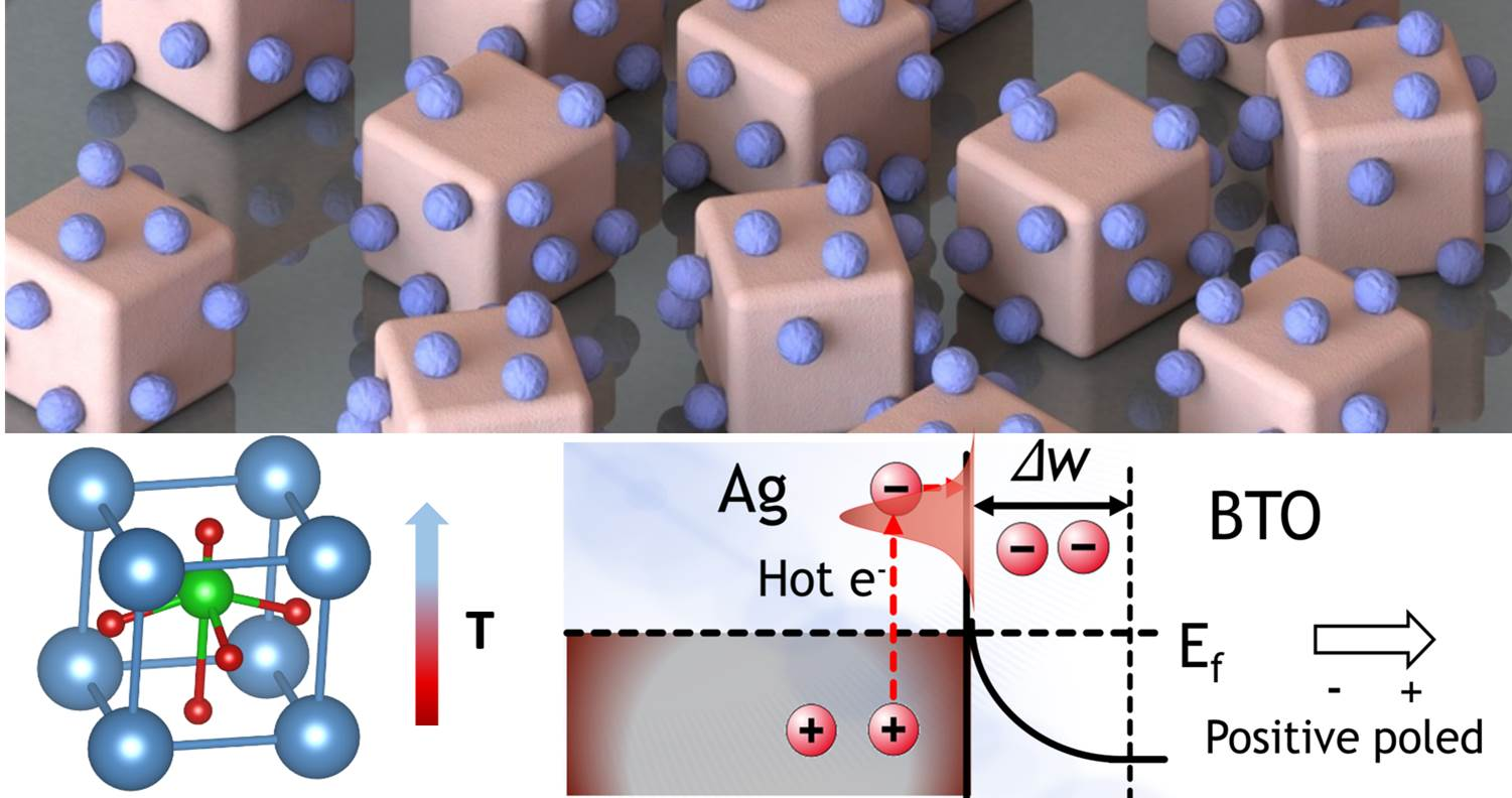 Optically governed dynamic surface charge redistribution of hybrid plasmo-pyroelectric nanosystem