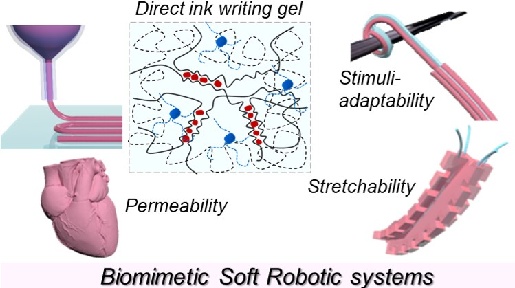 Direct-ink-write 3D printing of hydrogels into biomimetic soft robots